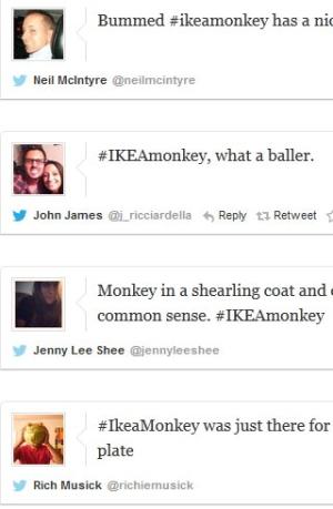 Digital Extra Monkey Tweet