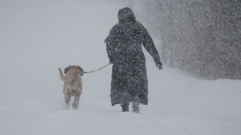 A woman walks her dog along a country road near Montreal, Thursday, Dec. 27, 2012 during the first major snowstorm of winter in the region. (Graham Hughes / THE CANADIAN PRESS)