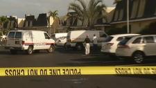 Crime scene in Hallandale Beach