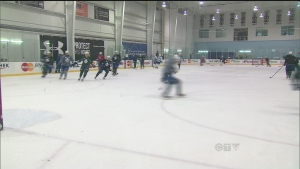 Toronto Maple Leafs team practice at the MasterCard Centre in Etobicoke, Sunday Jan. 13, 2013
