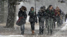 Southern Ontario braces for major winter storm