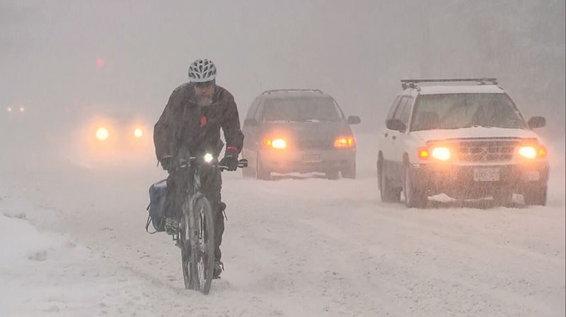 A man rides his bike through a snowstorm in Toronto, Friday, Feb. 8, 2013.