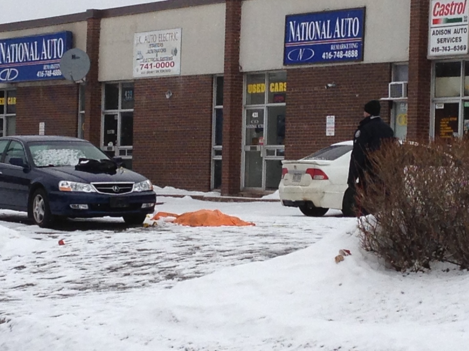 Police investigate murder scene outside a banquet facility on Signet Drive near Finch Avenue and Highway 400 (Byron Auburn/CTV News)