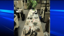 Police busted alleged marijuana grow-operation