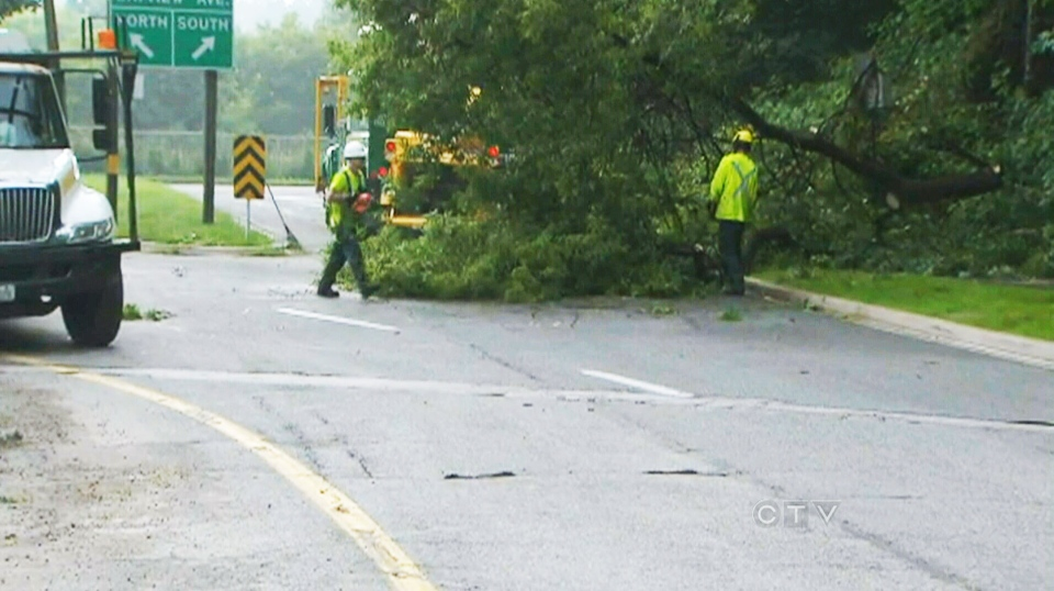 Crews work to remove a downed tree and hydo wires in Toronto on Tuesday, July 9, 2013.