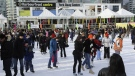 A crowd of skaters practice their skills on the Natrel Rink at the Harbourfront Centre in Toronto. (HarbourfrontCentre.com)