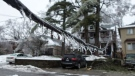 Icicles hang from a downed power line on a residential street in Toronto as over 250,000 people face up to 72 hours without electricity after a storm brought heavy ice rain, on Sunday, Dec. 22, 2013. (Chris Young THE CANADIAN PRESS)