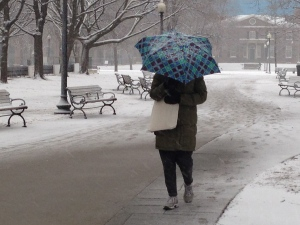 A woman tries to block the snow with an umbrella as she walks through Grange Park in downtown Toronto on Wednesday, March 12, 2014. (Chris Kitching/CP24)
