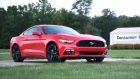 Consumer Alert: Ford mustang celebrates 50 years