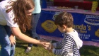 CTV Toronto: Lemonade stand raises huge funds