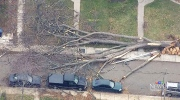 CTV Toronto: Cleanup after wind storm