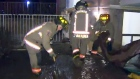CTV Toronto: Water main break floods apartment