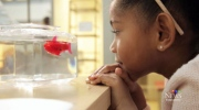 Consumer Alert: Top tech toys for kids