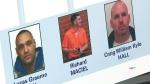 CTV Toronto: Project Forza arrests
