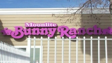 The logo for the Moonlite Bunny Ranch in Nevada is seen in this image captured from video.