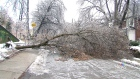CTV Toronto: One year after the ice storm