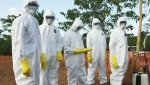 CTV News Channel: Ebola consequences
