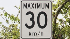 Toronto's top doctor is recommending lowering the speed limits on residential city streets to 30 km/h in an effort to cut down on pedestrian and cyclist fatalities.