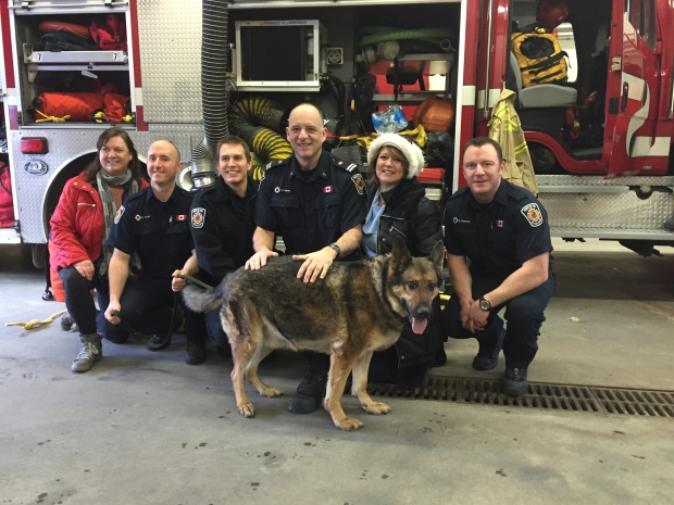 Blaze the German Shepherd had to be rescued by firefighters after he walked out onto thin ice covering a Brampton, Ont. pond.<br><br>