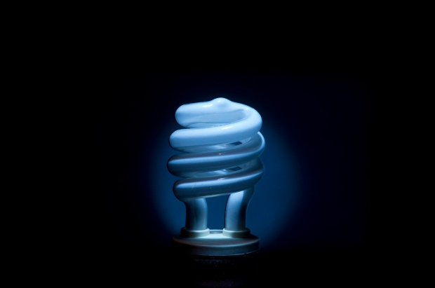 A compact fluorescent light bulb (CFL) is seen Saturday January 19, 2013 in Ottawa. (Adrian Wyld/THE CANADIAN PRESS)