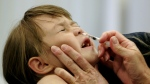 In this Oct. 4, 2005, file photo, Danielle Holland reacts as she is given a FluMist influenza vaccination in St. Leonard, Md. (AP Photo/Chris Gardner, File)