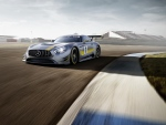 The new Mercedes-AMG GT3 race car is show. (Mercedes-Benz)