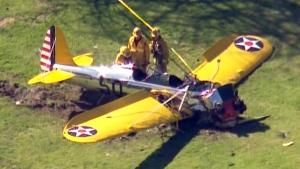 Harrison Ford hurt in plane crash