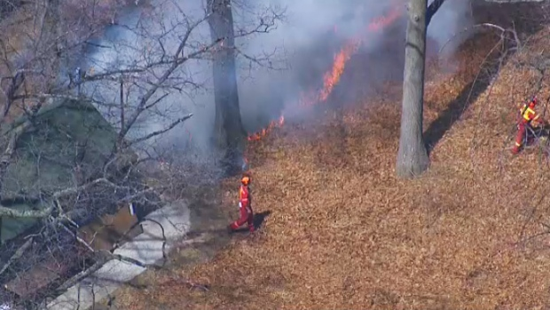 Controlled fires in High Park