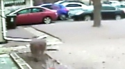 CTV National News: Dramatic police pursuit