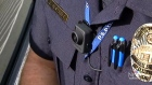 CTV Toronto:  Recording police with body cameras