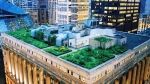 CTV National News: Raising the rooftop garden