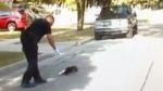 Officer assists skunk