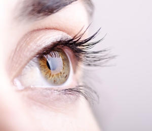 An eye scan can help identify early indicators of Alzheimer's disease, according to new Canadian research. (Shutterstock.com / maxriesgo)