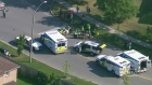 CTV Toronto: Children, woman injured