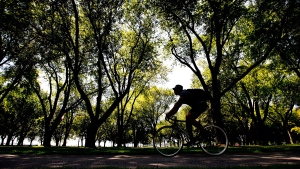 A man cycles along the Lakeshore taking in the warm weather in Toronto on Wednesday, Aug. 19, 2015. (Nathan Denette / THE CANADIAN PRESS)
