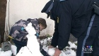 CTV Barrie: Officer helps build snowman