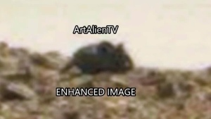 CTV News Channel: Mouse on Mars?