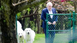 Conrad Black walks with his two dogs as he arrives at his Bridle Path residence in Toronto, on Friday, May 4, 2012. (THE CANADIAN PRESS/Nathan Denette)