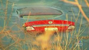 CTV Toronto: Car lands in pond, driver escapes