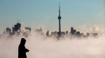 Steam rises as a man looks out on Lake Ontario in front of the skyline during extreme cold weather in Toronto on Saturday, February 13, 2016. THE CANADIAN PRESS/Mark Blinch