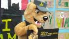 CTV Toronto: Invictus Games mascot unveiling