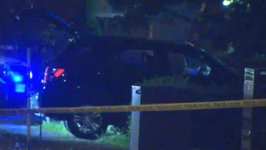 A black Lexus SUV crashed into some hedges after a gunfire exchange with another vehicle.
