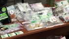 Update on medical marijuana dispensaries raids