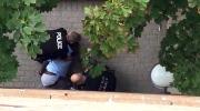 CTV National News: Somali-Canadian killed