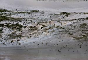 Oil is seen on the North Saskatchewan river near Maidstone, Sask on Friday July 22, 2016. (THE CANADIAN PRESS/Jason Franson)