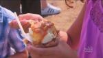 toronto food truck festival