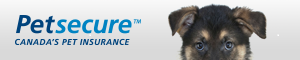CTV Toronto - Poll Ad - PetSecure - Dog