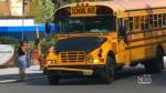 CTV Toronto: TDSB, TCDSB low on bus drivers