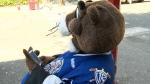 CTV National News: The misunderstood Marmot