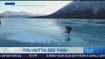 CTV News Channel: Chainsaw rider